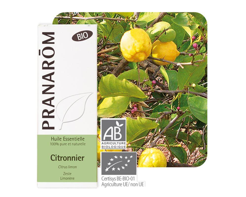 óleo essencial da casca de citrus limon