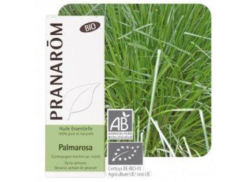 óleo essencial da parte aérea de palmarosa - cymbopogon martini